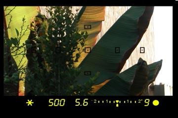 Camera AEL button